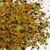 A.C. LEGG Pickling Spice - 5 OZ BOTTLE