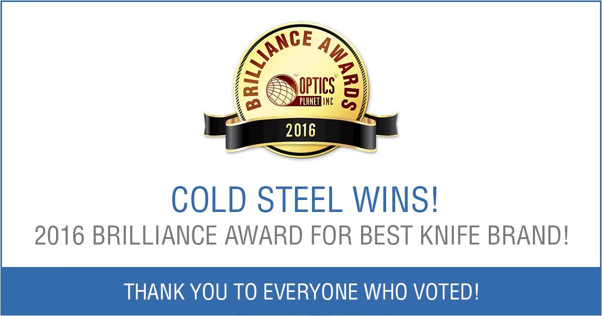 2016 Brilliance Award