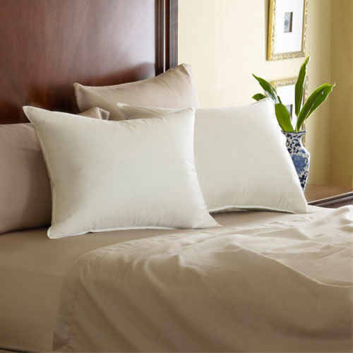 Pacific Coast Feather Co Pacific Coast Pillows or Feather Pillow
