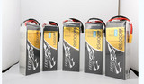 Standard and Smart Lithium Polymer Batteries