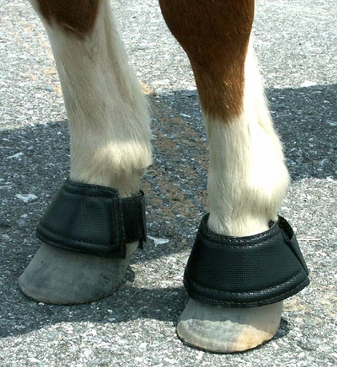 Intrepid International NEW Horse Double Closure Ribbed Bell Boots