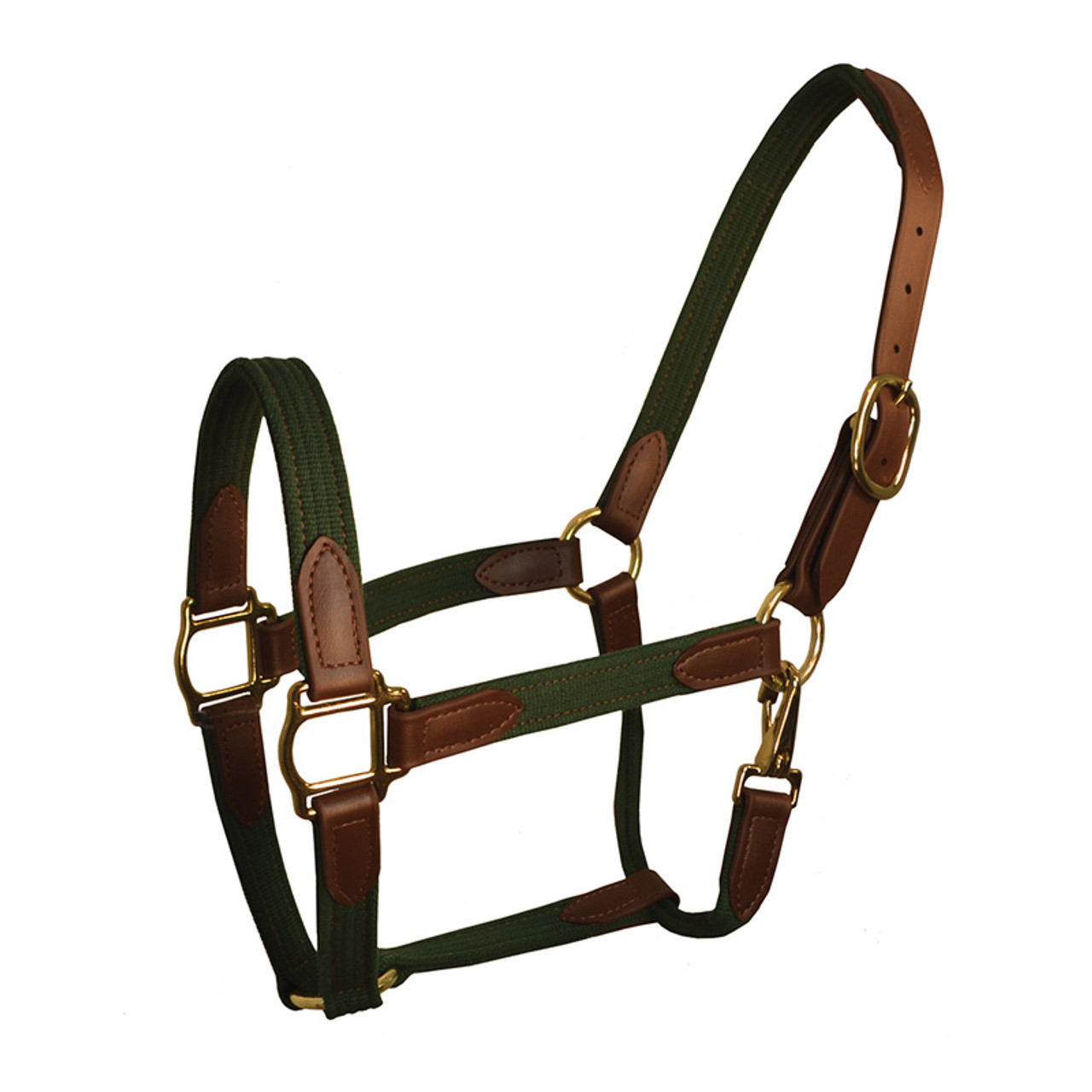 Perri/'s 3//4-Inch Leather Turnout Halter
