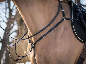English Saddles and Tack