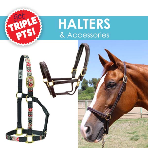 3X Pts on Halters & Accessories!