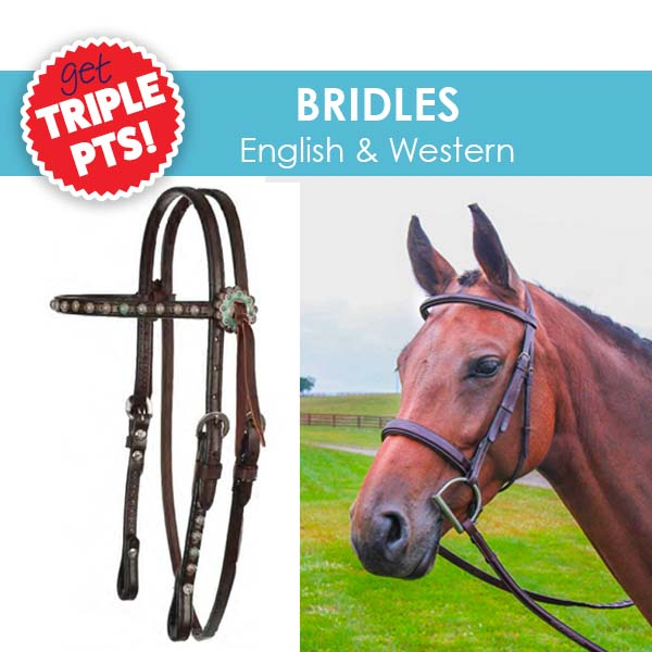 3X Pts on Bridles!