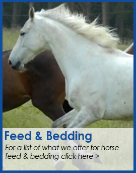 Feed & Bedding