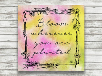 Bloom Wherever You Are Planted - Gallery Wrap