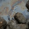 crude oil on water
