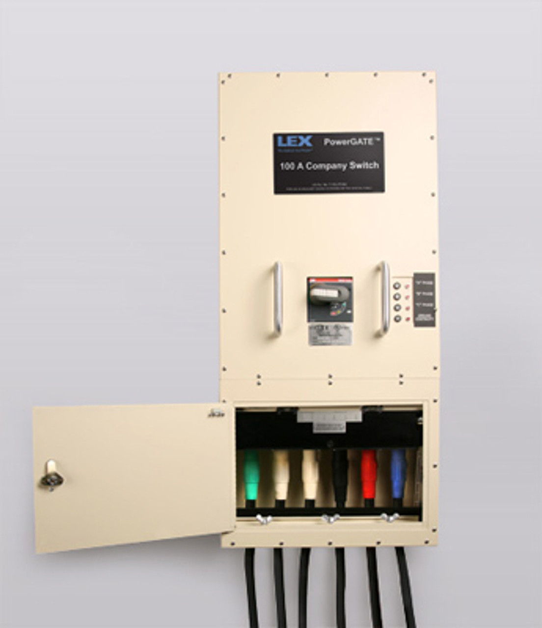 Lex Company Switch - 100A, Type 1, Indoor