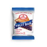 Blueberry Fruit Bars