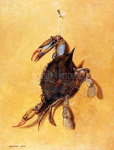 Crab by William Aiken Walker