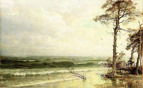 Cedars On The Shore Near Atlantic City by William Trost Richards
