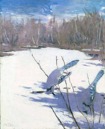 Blue Jays In Winter by Abbott Handerson Thayer