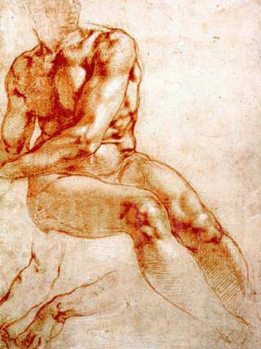 Male Nude Study by Michelangelo
