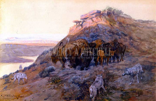 Buffalo Herd At Bay by Charles Marion Russell