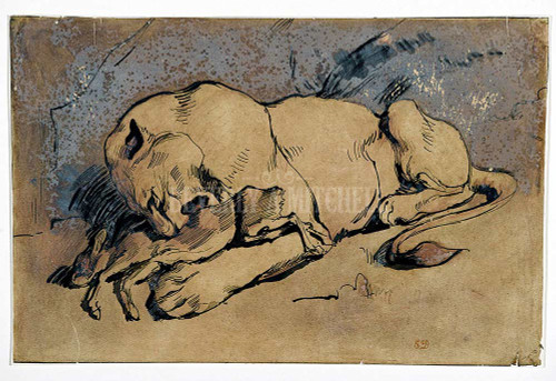 Lioness Devouring A Rabbit By Delacroix Ferdinand Victor Eugene