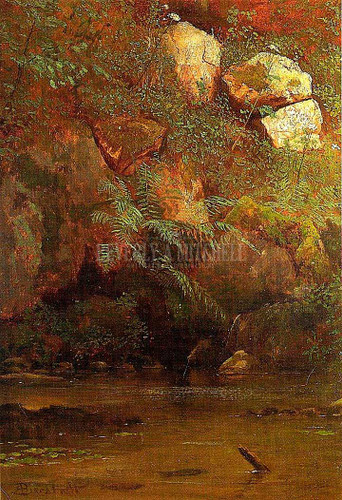 Ferns And Rocks On An Embankment by Albert Bierstadt