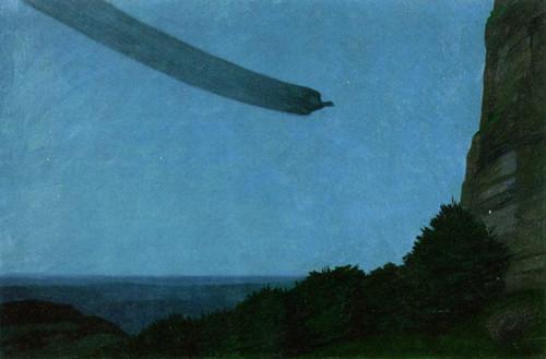 Black Cock In Gliding Flight By Hans Emmenegger