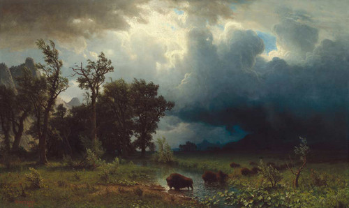 Buffalo Trail The Impending Storm By Albert Bierstadt