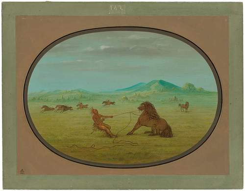 Catching Wild Horses   Pawnee By George Catlin