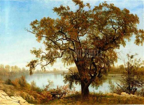 A View From Sacramento by Albert Bierstadt