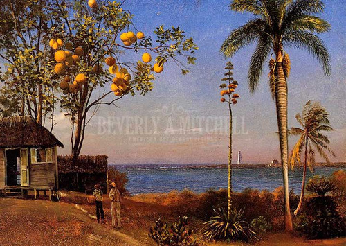 A View In The Bahamas by Albert Bierstadt