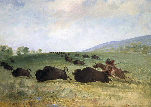 An Osage Indian Lancing A Buffalo By George Catlin