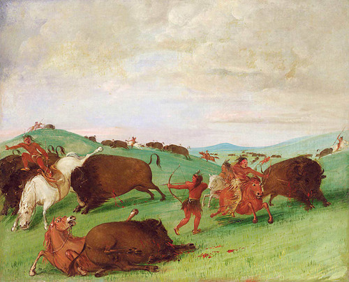 Buffalo Chase Bulls Making Battle With Men And Horses By George Catlin