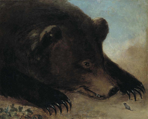 Portraits Of A Grizzly Bear And Mouse By George Catlin