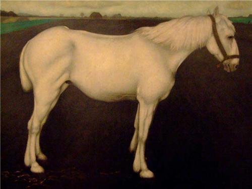 A White Horse By Jan Mankes