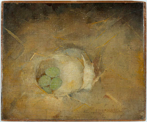 Bird's Nest With Green Eggs By Jan Mankes
