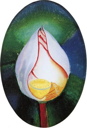 Lotus Flower By Joseph Stella