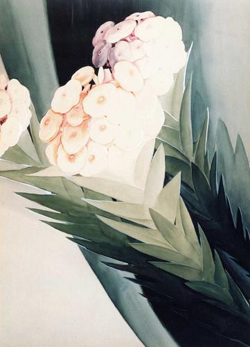 Tropical Flowers By Joseph Stella