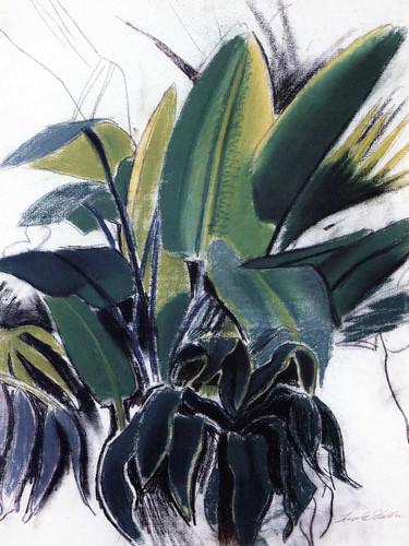Tropical Plants By Joseph Stella