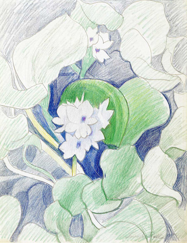 White Flowers By Joseph Stella