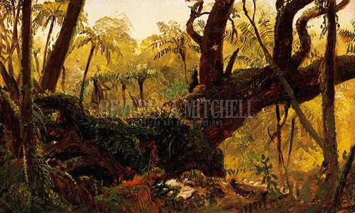 Rain Forest Jamaica West Indies by Frederic Edwin Church