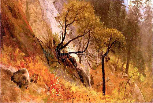 Landscape Studyyosemite California by Albert Bierstadt