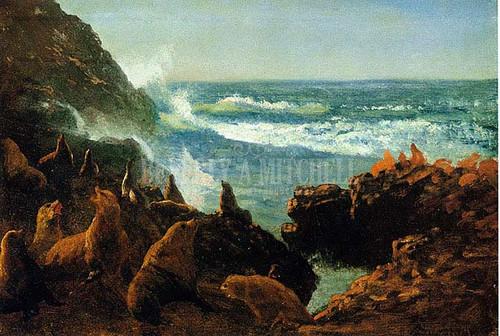 Sea Lions Farallon Islands by Albert Bierstadt