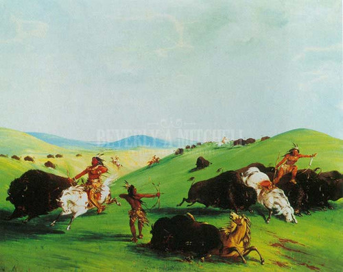 Buffalo Chase On The Upper Missouri by George Catlin