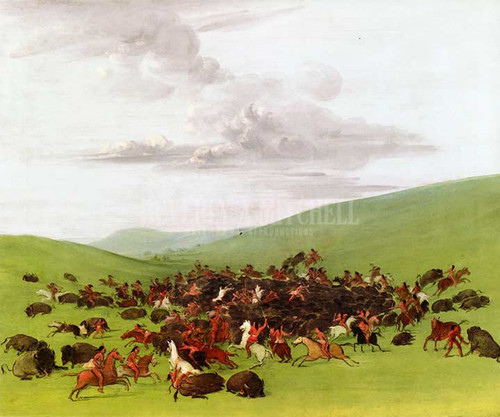 Buffalo Hunt A Surround By The Hidatsa by George Catlin
