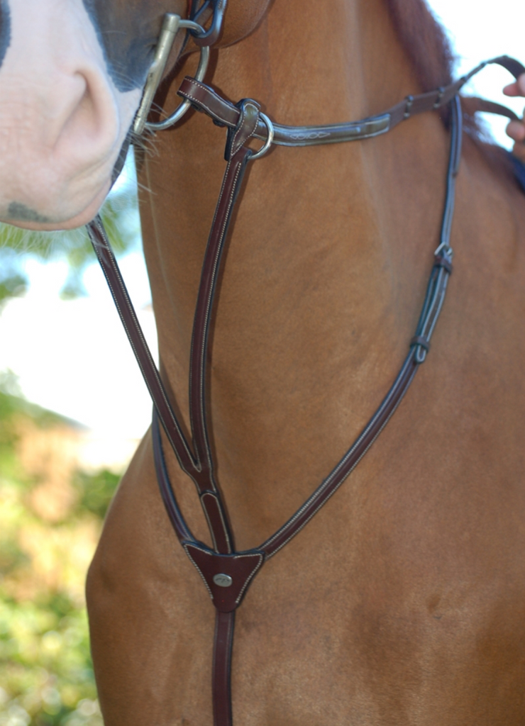 DY'ON FANCY RUNNING MARTINGALE