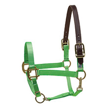 PERRI'S NYLON SAFETY HALTER