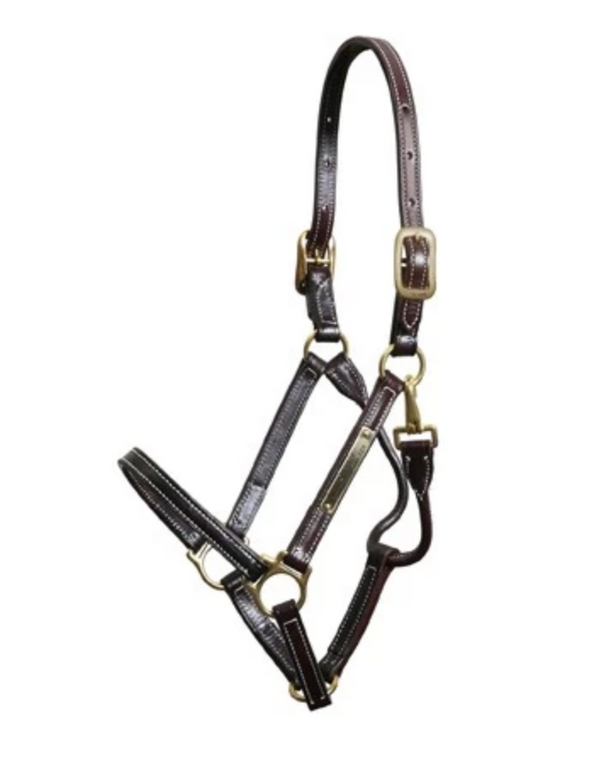 WALSH SHOWMAN LEATHER HALTER