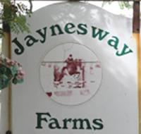 jaynesway.jpg