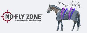 nnoflyzone2.jpg