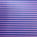 "Purple Stripe (Matte) 12""x 24"""