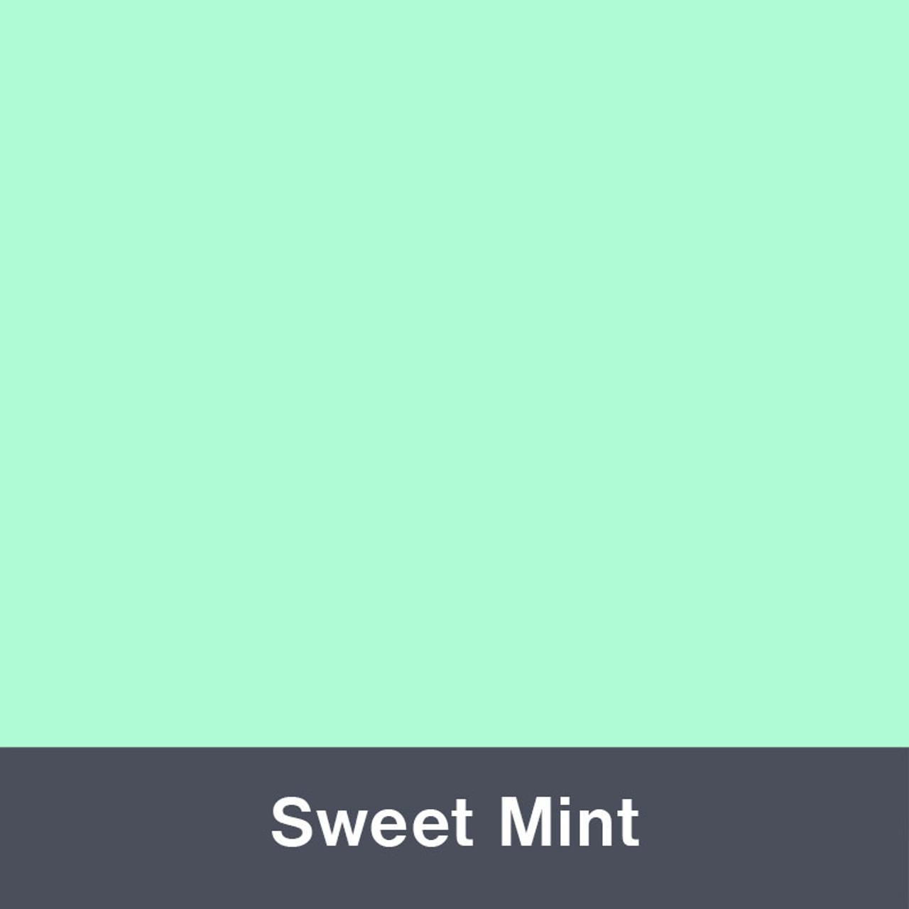 "Iron-on Sweet Mint Stretch 12"" x 14.75"""