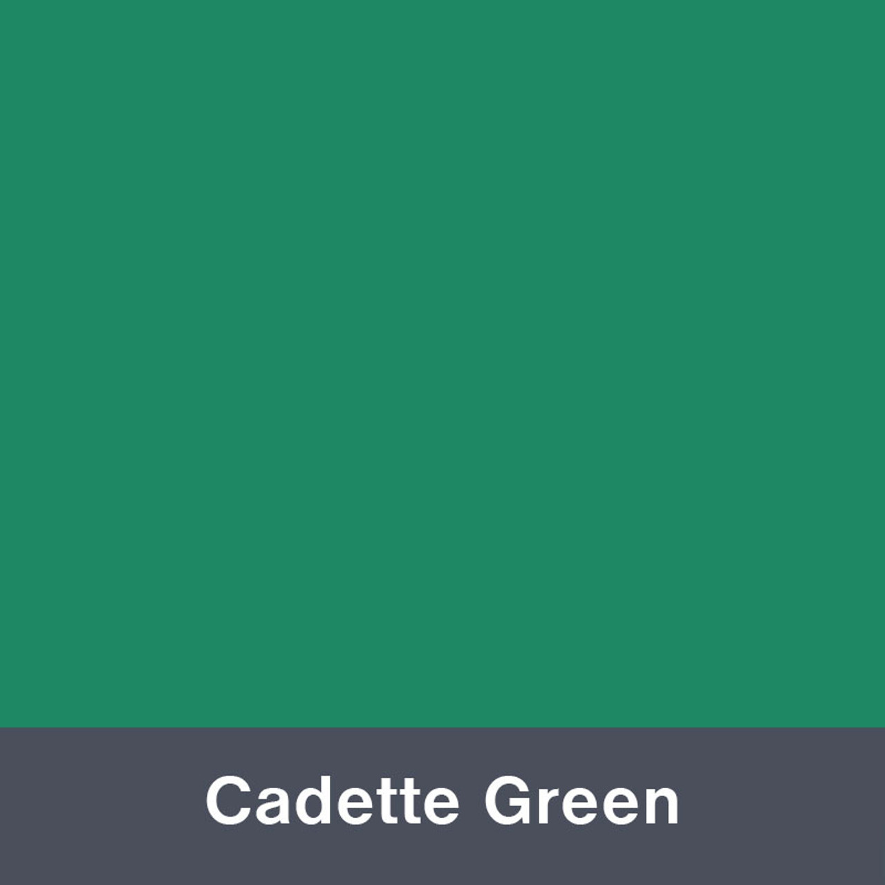 "Iron-on Cadette Green 12"" x 14.75"""