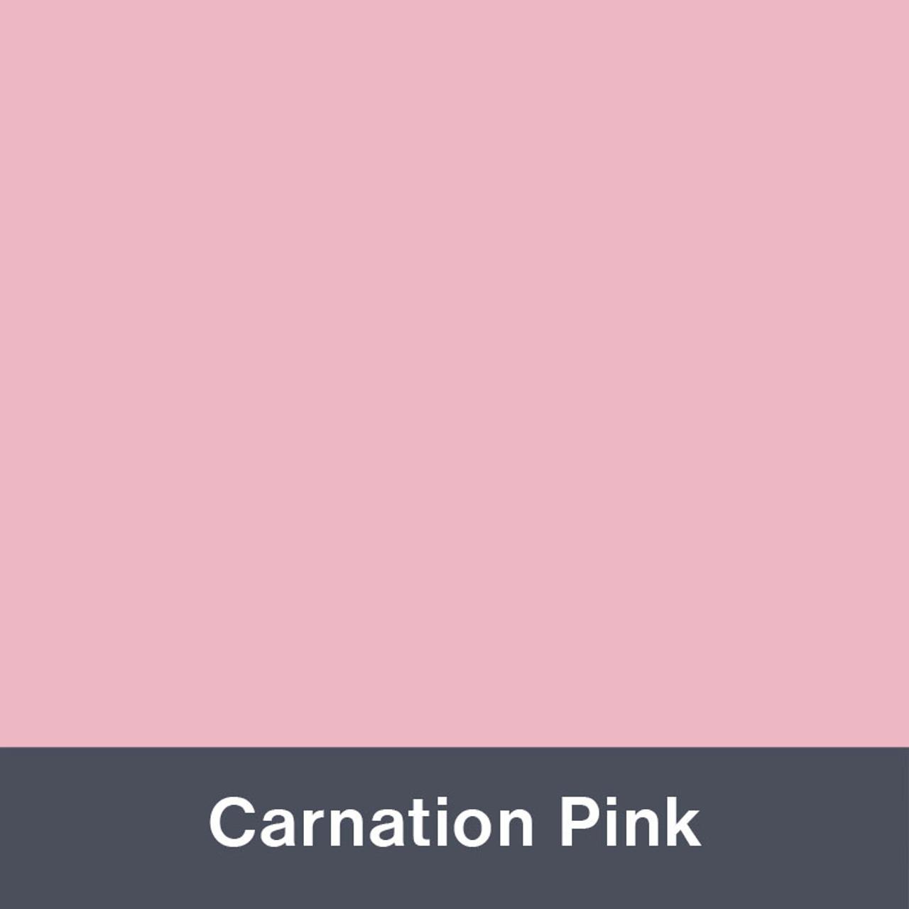"Carnation Pink (Matte) 12"" x 24"""