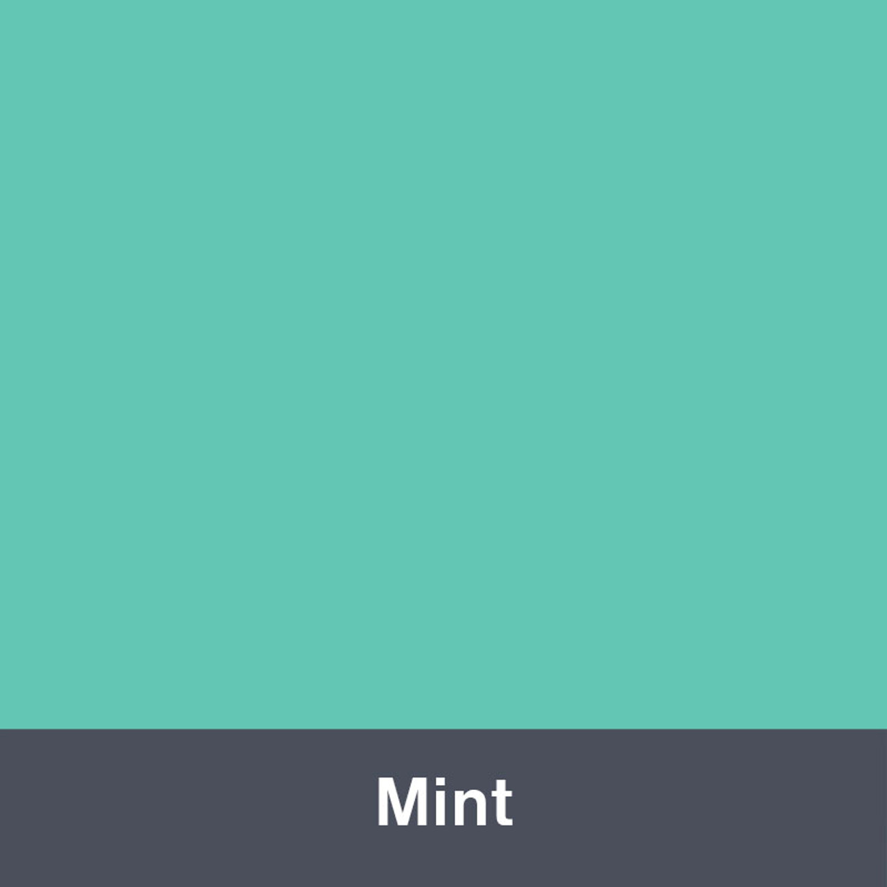 "Mint (Gloss) 12"" x 24"""
